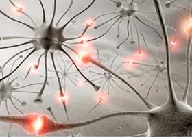 nerve-cells-and-neuropathic-pain-relief